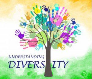Democracy and diversity