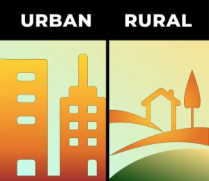 Rural and Urban livelihoods